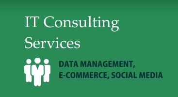IT Consulting Services - Data Management, E-Commerce, Social Media